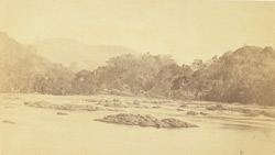 View on Tambrapoorney [Tambraparni River], Tinnevelly District. 254360